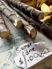 fresh sugar cane by the length